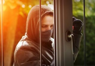 burglar 7