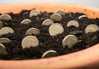 garden money