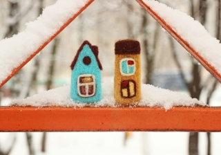 winter wooly houses