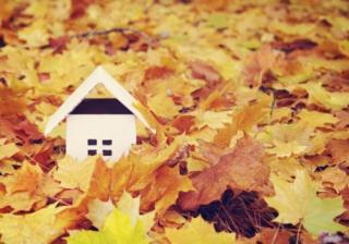 Autumn House 905