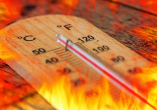 Hot 577