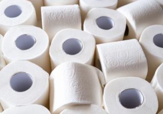 Toilet rolls 559