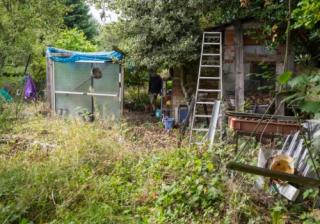 untidy garden 597