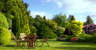 Top tips to get your garden ready for summer