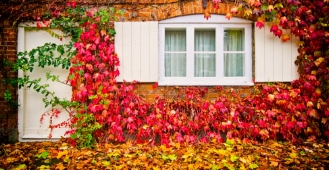 Top tips to get your home Autumn-ready