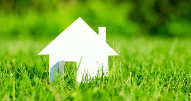 House Grass 2