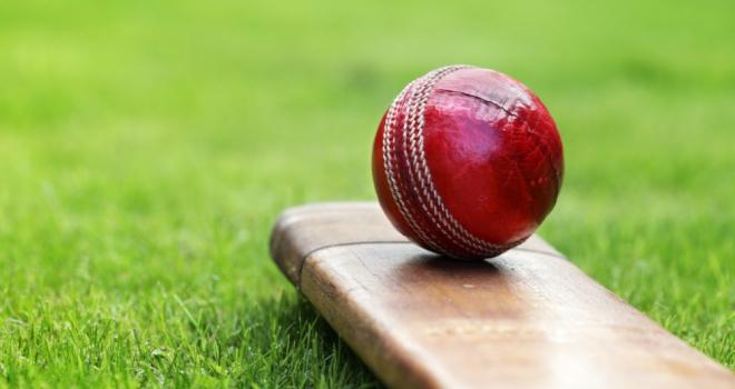 Cricket 503