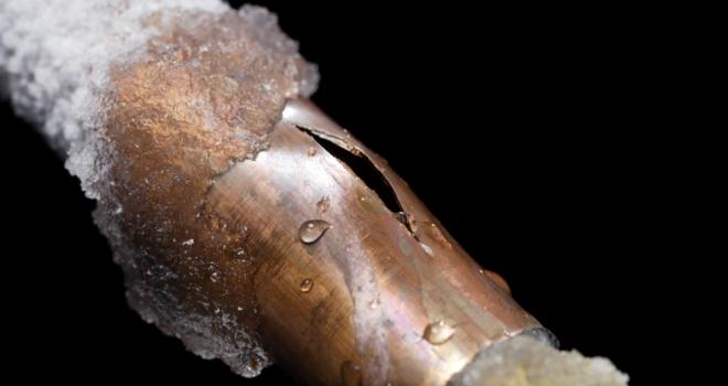 Frozen Pipe 113