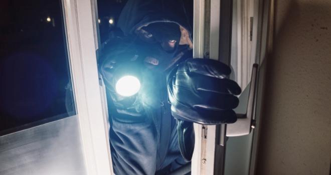 Night Burglar 442